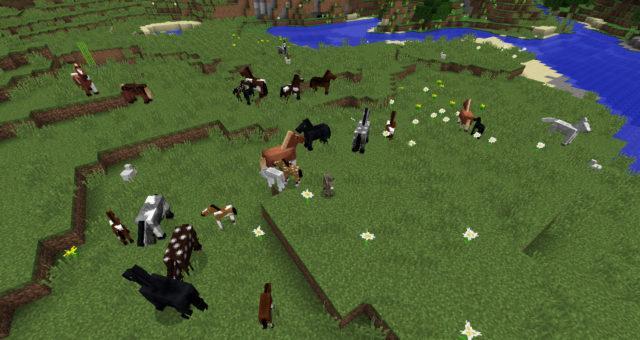 Лошади на равнине